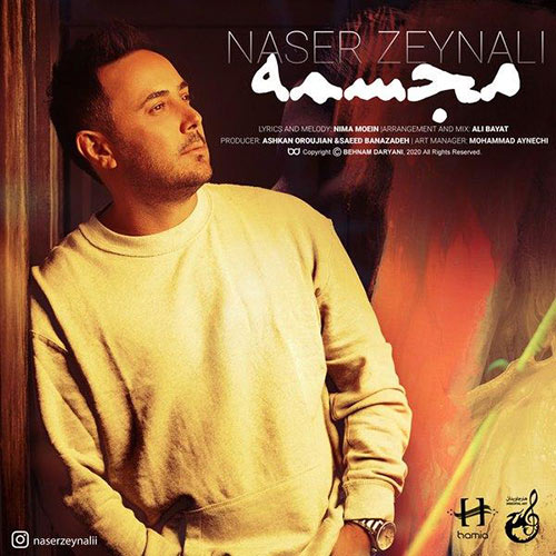 ناصر زینلی مجسمه